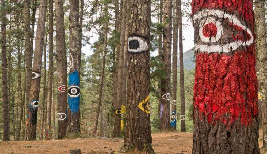 Bosque de Oma Ibarrola